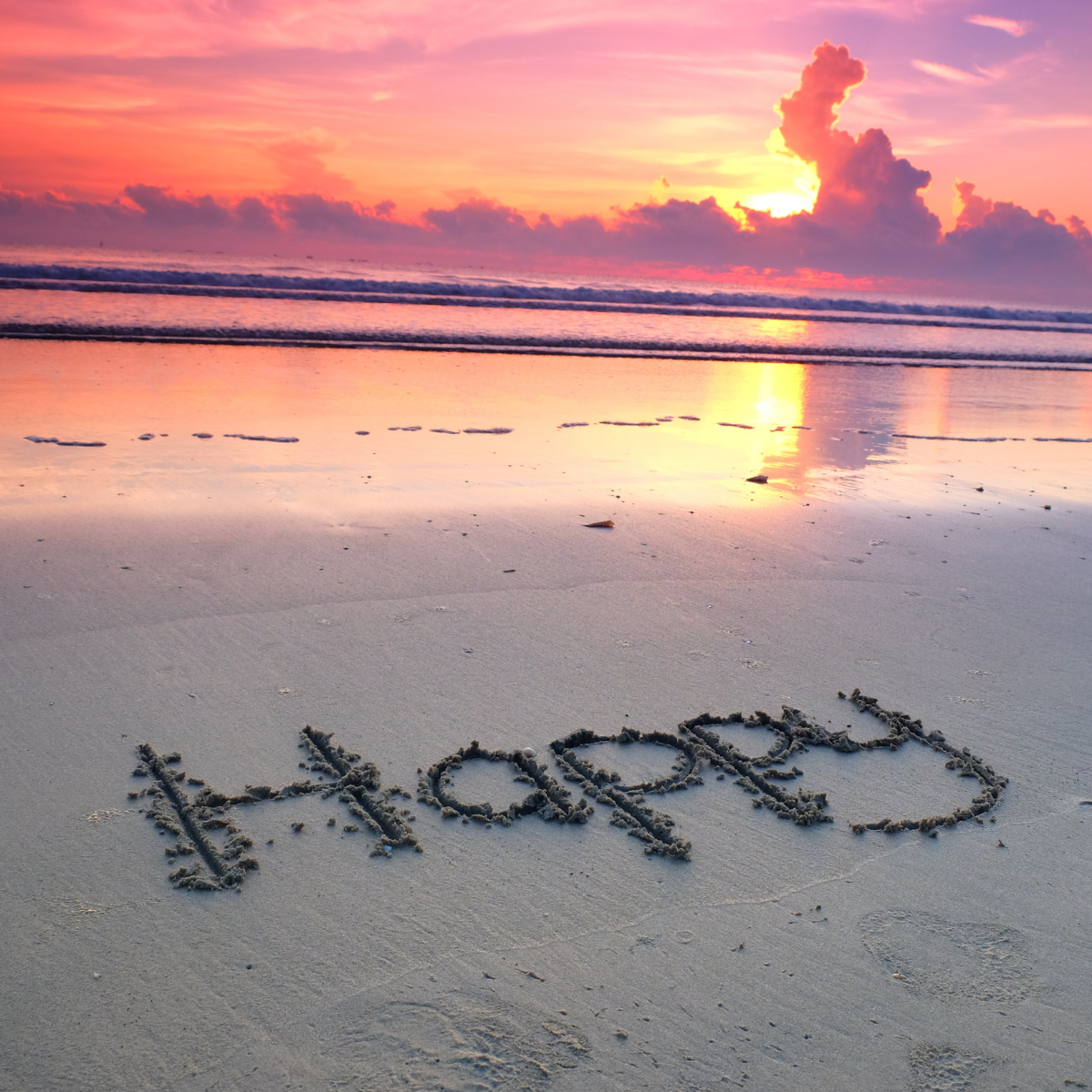 How To Lead A Happy And Successful Life